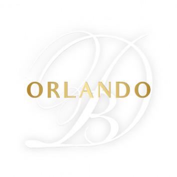 Diner en Blanc Orlando returns Friday, November 15th!