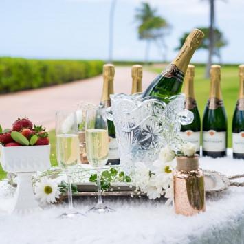 Media Coverage of Diner en Blanc Honolulu 2015