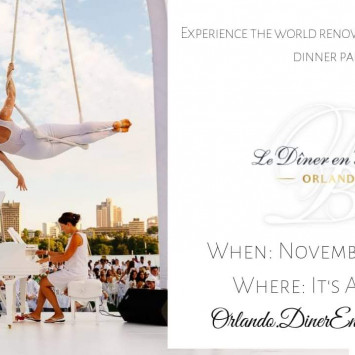 Diner En Blanc Orlando returns Sunday, November 11th!