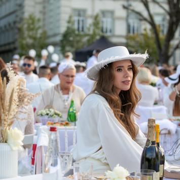 """""""Le Diner en Blanc"""" piknikas surengtas Lukiškių aikštėje"""