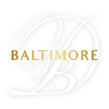 New Members on the Host Team of Le Dîner en Blanc - Baltimore!