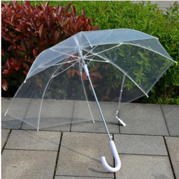 Umbrellas available!