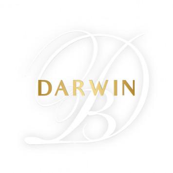 Le Dîner en Blanc to premiere in Darwin