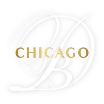New Member to the Host Team Le Dîner en Blanc - Chicago