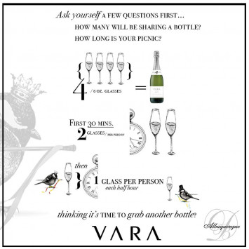 VARA - Picnic & Party Tips
