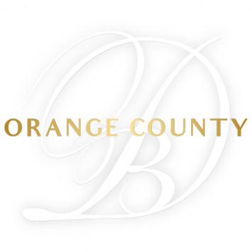 New Members to the Host Team Le Dîner en Blanc - Orange County