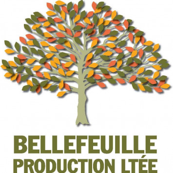 Presentation sponsors Dîner en blanc 2017 : Bellefeuille Production