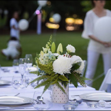 What to bring - A Beginners Guide To Dîner en Blanc