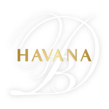 Le Diner en Blanc - Havana: Important Information