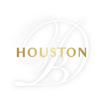 New Hosting Team for the 2019 edition of Le Dîner en Blanc - Houston