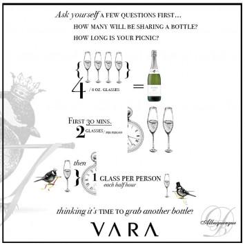 VARA - Picnic & Party Tips
