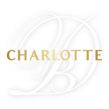 Le Dîner en Blanc to returns to Charlotte this summer!